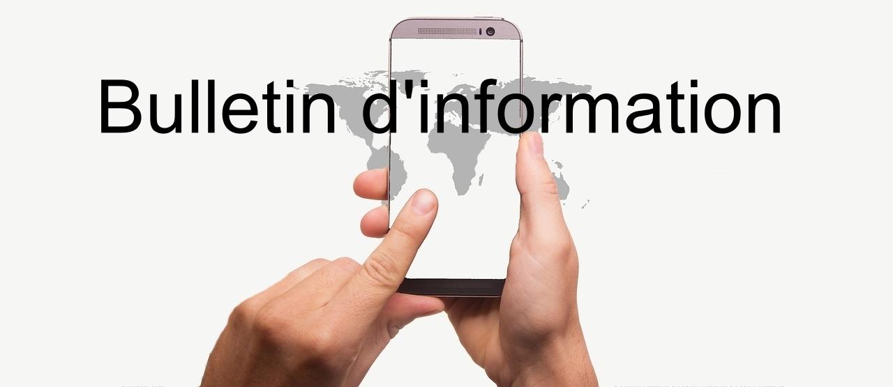 newsletter, hands, smartphone